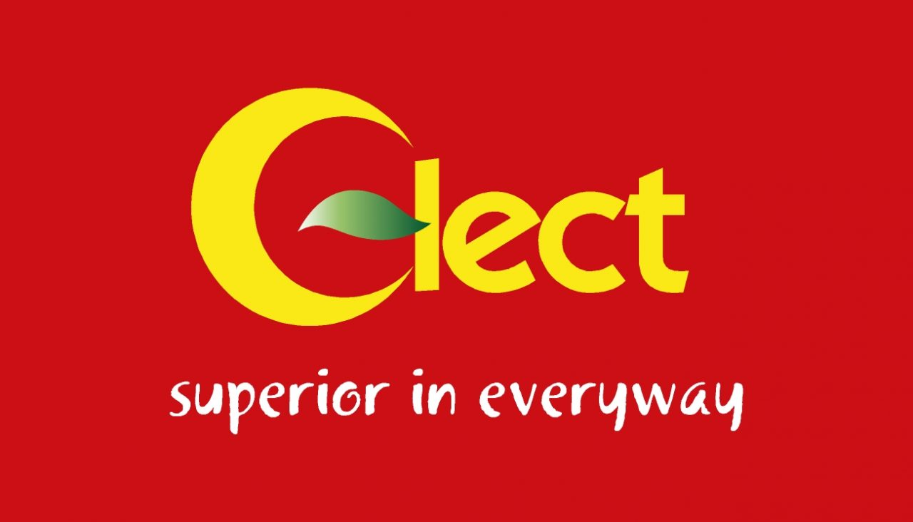 ClectLogo