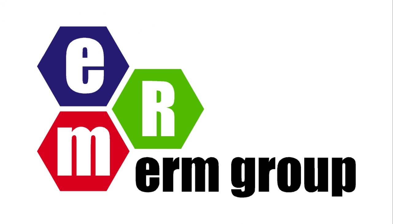 ERMgroupLogo