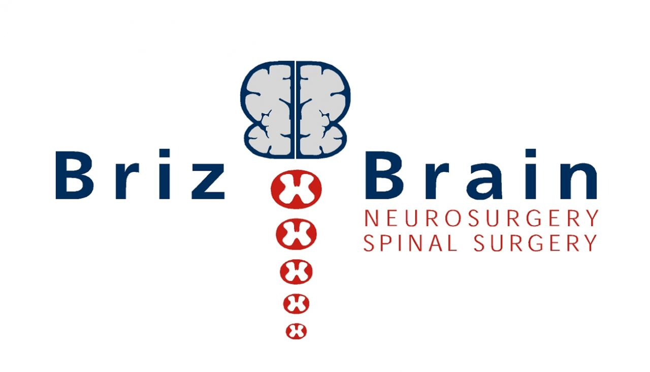 BrizBrain Logo
